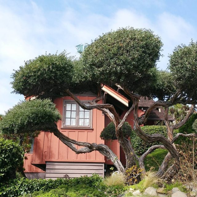 For rent in Laguna Beach built in 1917 lagunabeachlifestylez lagunabeachrealestatehellip